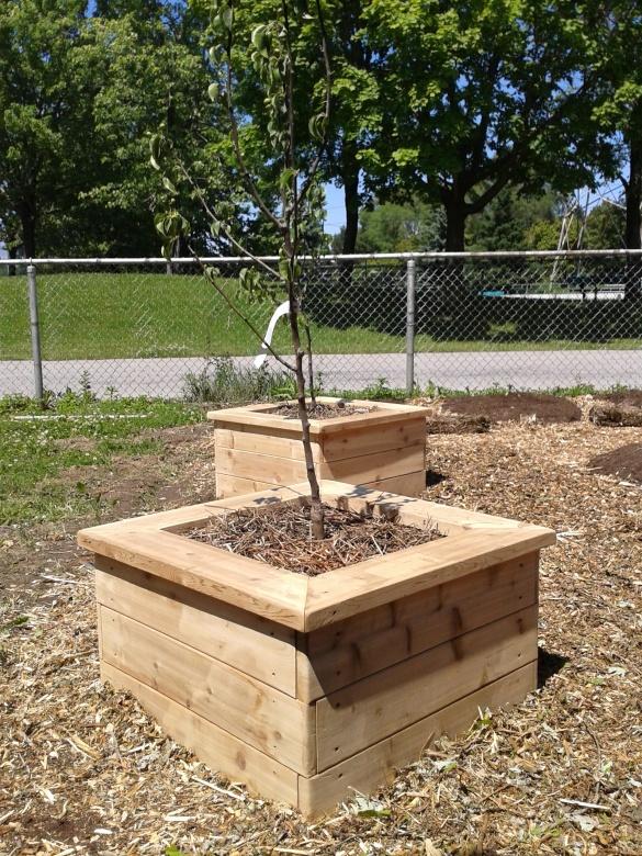 ron hazelton planter boxes